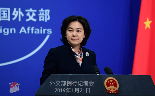 Foreign Ministry spokesperson Hua Chunying [File Photo: fmprc.gov.cn]