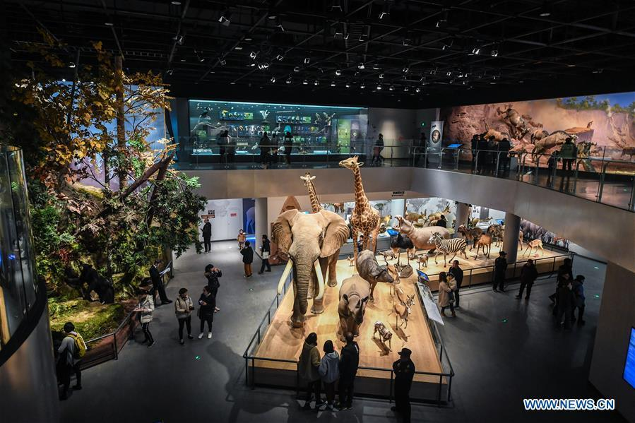 Museum attracts lots of visitors during winter vacation in China's Zhejiang