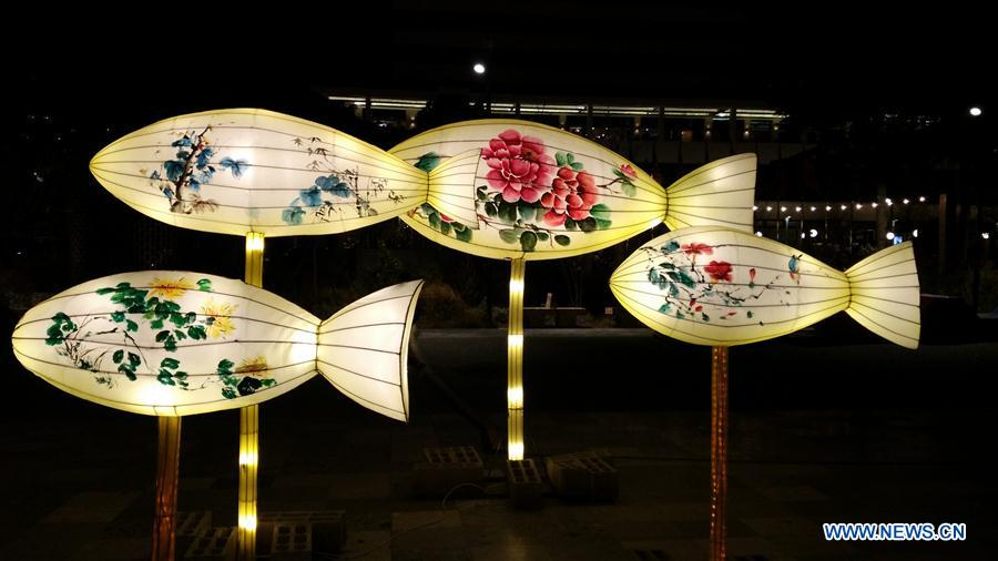 Chinese lantern festival opens in Albanian capital