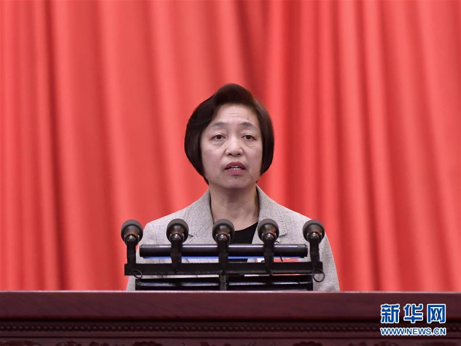 苏辉代表政协第十三届全国委员会常务委员会作提案工作情况的报告
