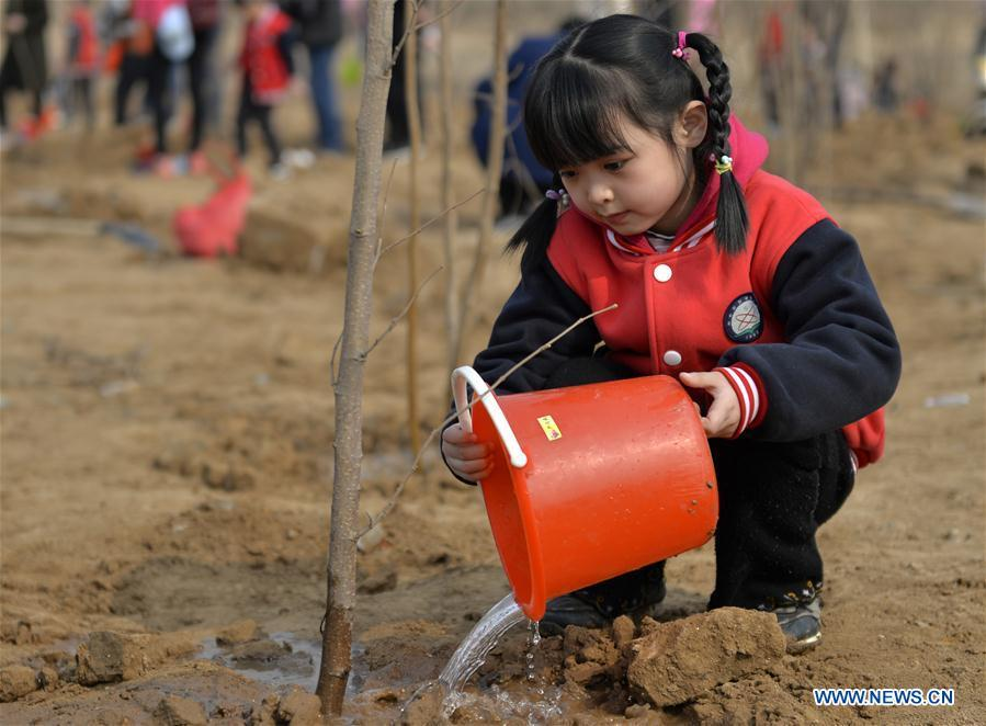 Primary school students take part in tree-planting activity in N China's Hebei
