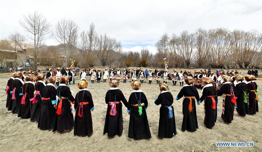 Ceremony marking start of spring plowing held in Khesum Village, China's Tibet
