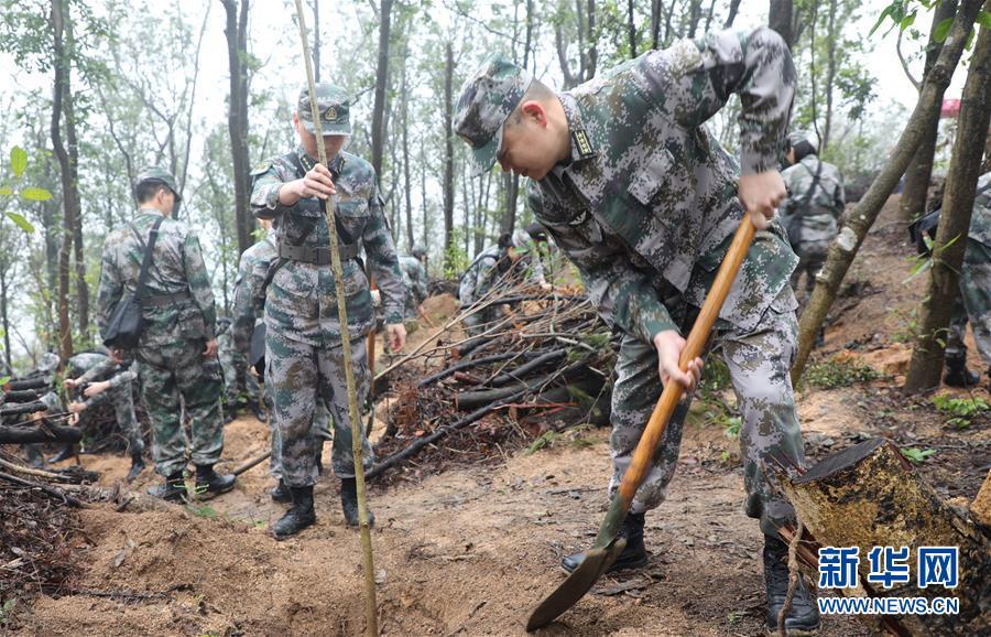 解放军驻澳门部队参加绿化植树活动