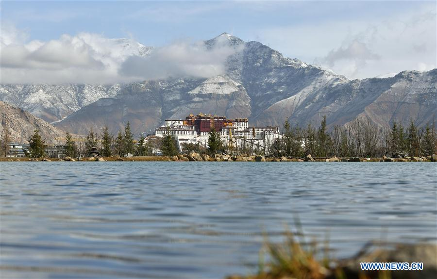 White paper notes significant progress in eco-environment protection in Tibet