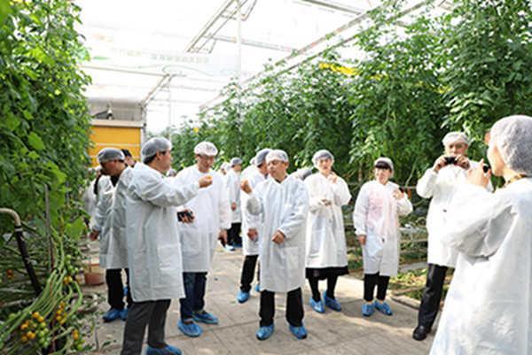 一场生动的智慧农业体验课――记农民日报社第五支部党日主题活动