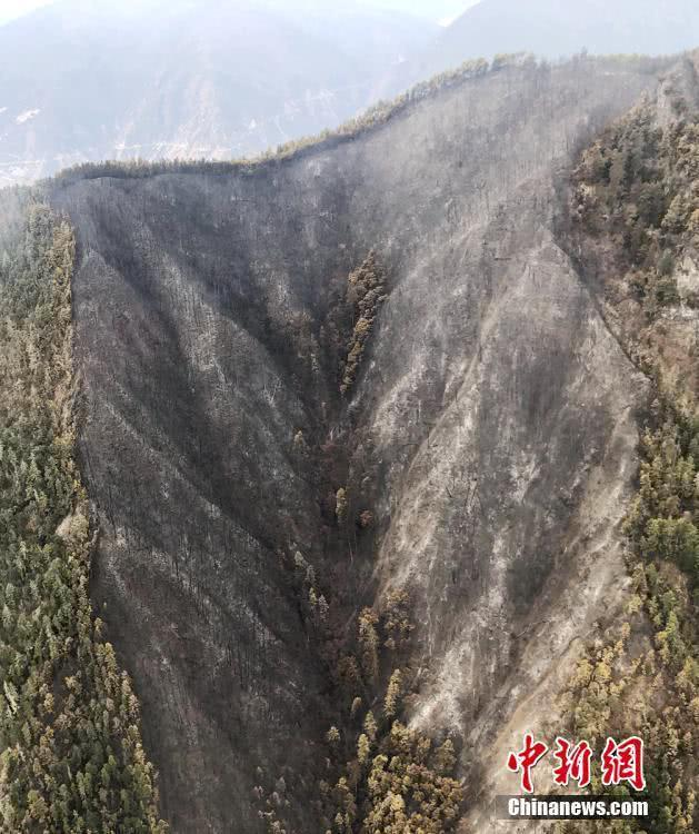Strong wind rekindles forest fire in Sichuan
