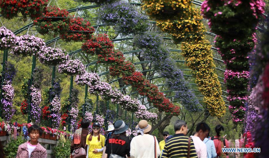 Flower exhibition held in China's Yangzhou