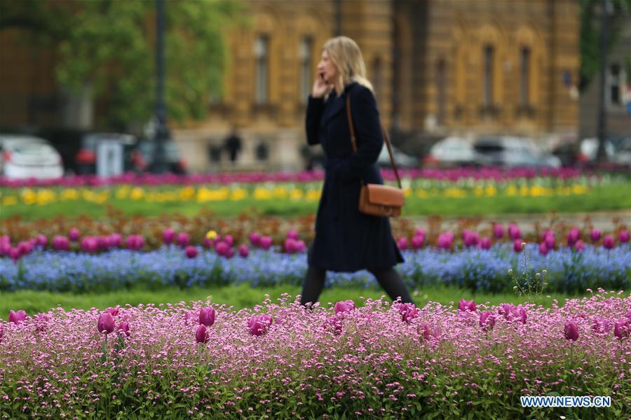 Flowers bloom in downtown Zagreb, Croatia