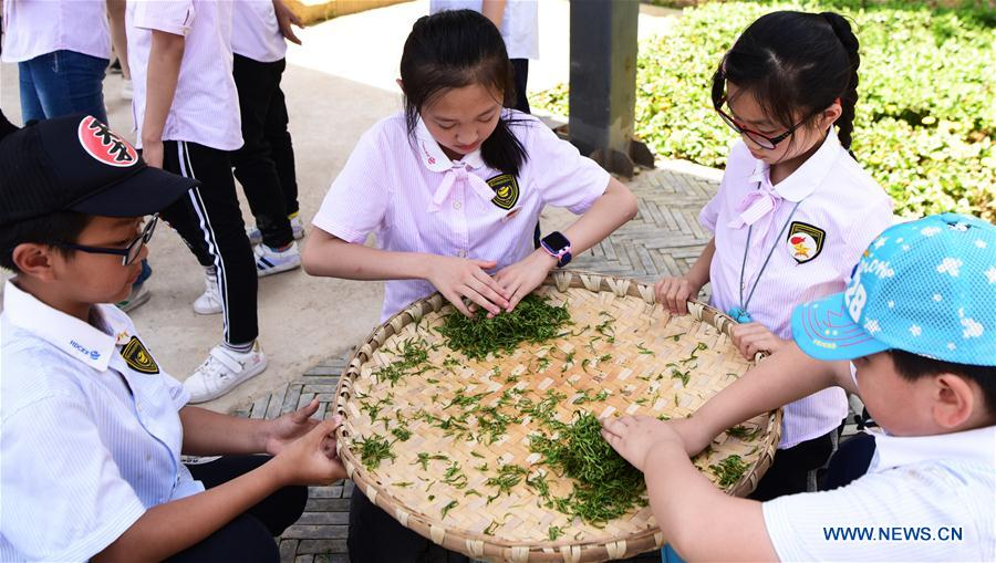 CHINA-CHONGQING-CHILDREN-TEA (CN)