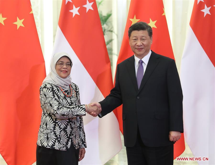 CHINA-BEIJING-XI JINPING-SINGAPOREAN PRESIDENT-MEETING (CN)