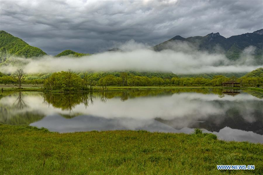 Scenery of Dajiu Lake wetland in Shennongjia, China's Hubei