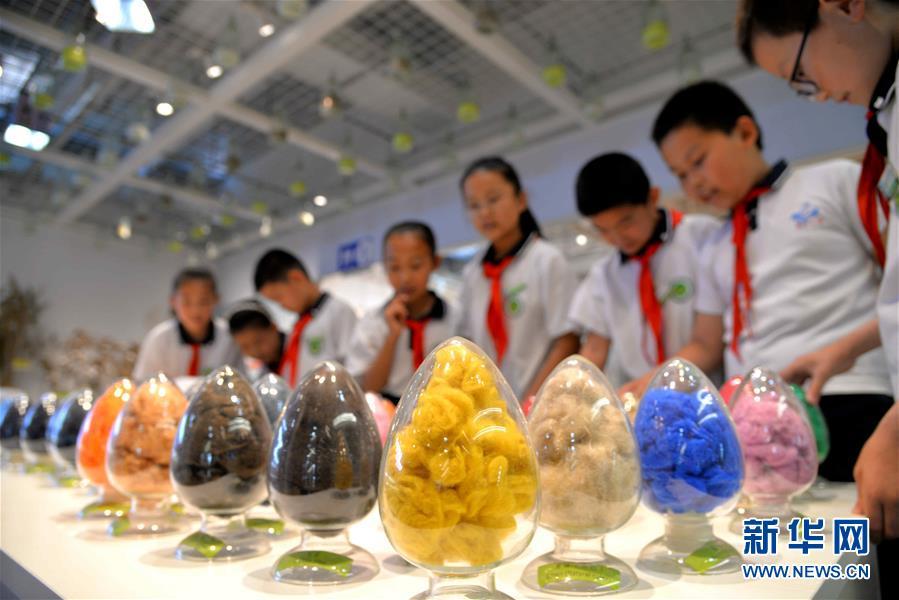 #(社会)(1)走进博物馆  迎接国际博物馆日