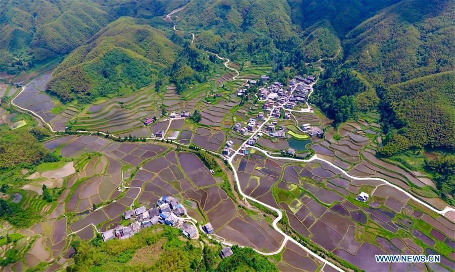 Aerial view of terraced fields in Gandong Township, China's Guangxi