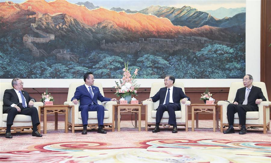 CHINA-BEIJING-WANG YANG-HONG KONG-DELEGATION-MEETING (CN)