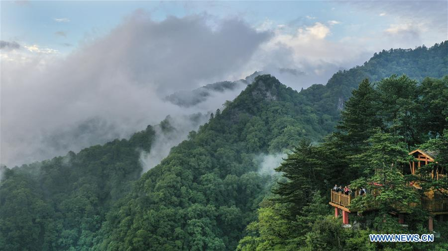 Scenery of Wulongdong National Forest Park in China's Shaanxi
