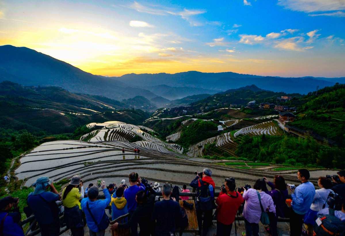 Longji terraced fields attract big crowds