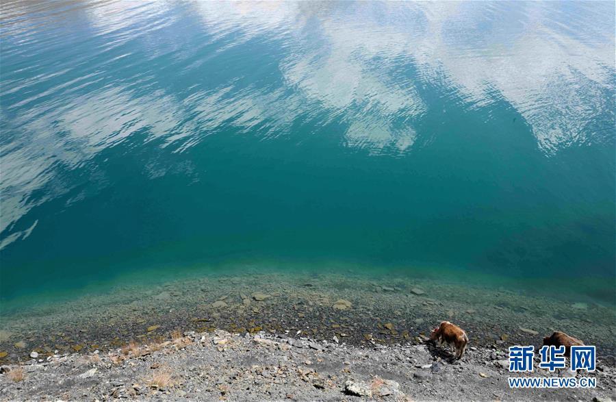 (环境)(9)西藏仍然是世界上生态环境最好的地区之一