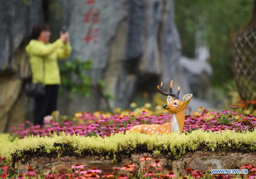 Jiangxi Day event held at Beijing horticultural expo