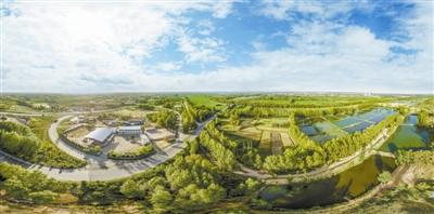 榆林:中国治沙从这里起步